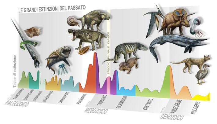 Extinctions. L'épisode pluvial du Carnien parmi les grandes extinctions de l'histoire de la vie.