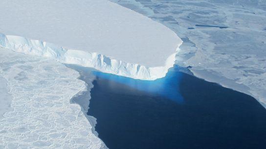 Vue de la langue glaciaire du glacier Thwaites.