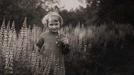 Les enfants-loups, oubliés de la Seconde Guerre mondiale