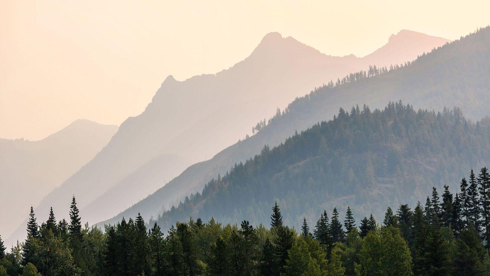 Les Cabinet Mountains dominent la forêt nationale de Kootenai, non loin de la vallée de Yaak dans ...