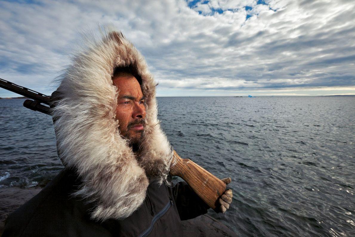 À la recherche d'ours polaire