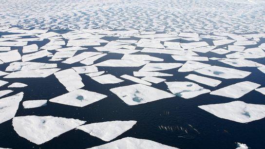 Cliquez pour visionner des photos du changement climatique en Arctique