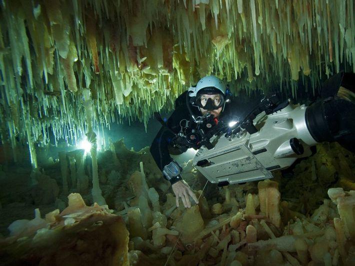 Kenny Broad, explorateur National Geographic de l'année 2011, est également un plongeur spéléo accompli. Il poursuit ...
