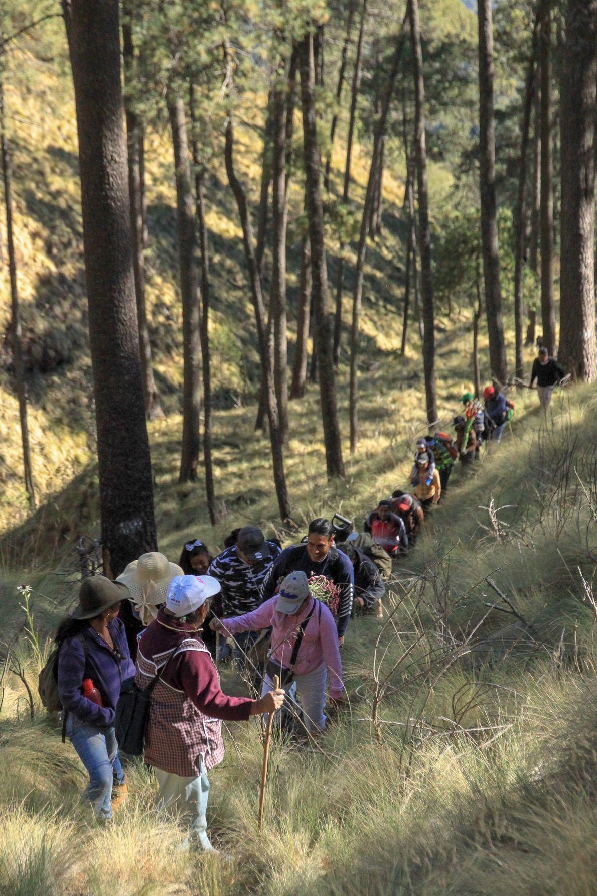 Dona Ines veille sur un groupe de marcheurs. Elle va mener vingtaine de personnes jusqu'au sommet ...