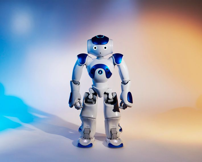 Les robots « majordomes » aux formes humanoïdes tels Nao sont parfois utilisés comme assistants du personnel soignant ...