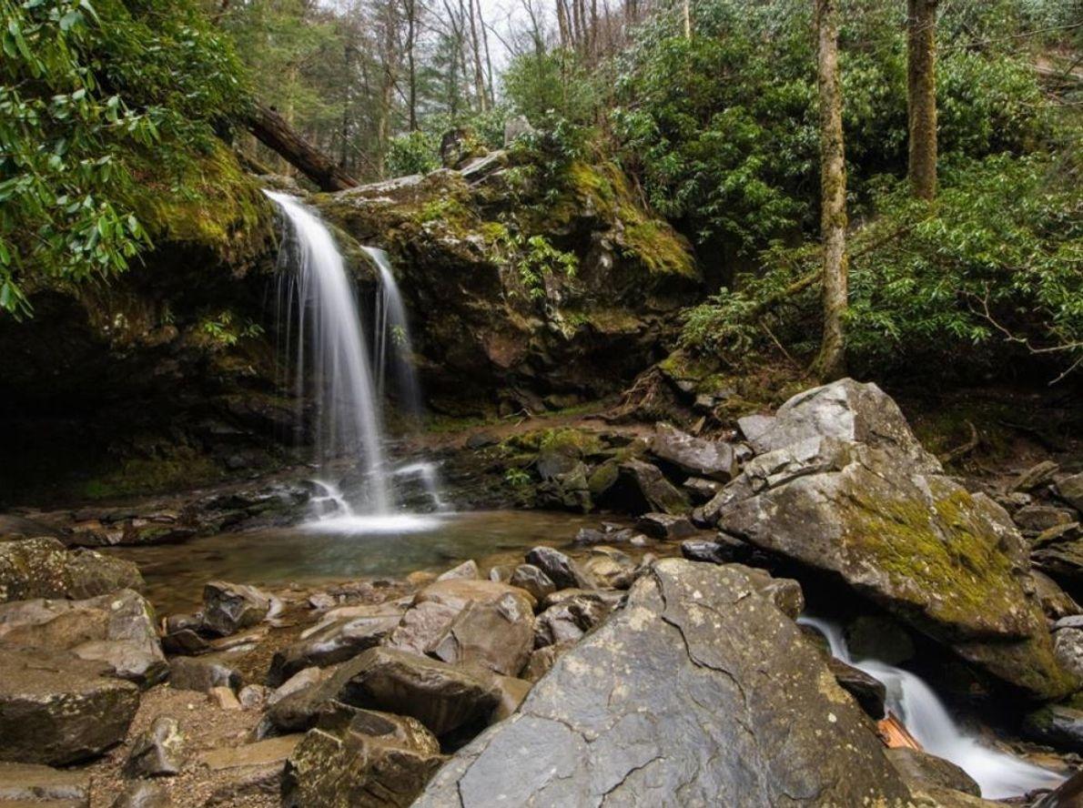 Les ruisseaux Roaring Fork se jettent dans les Grotto Falls, du côté du Tennessee dans le ...
