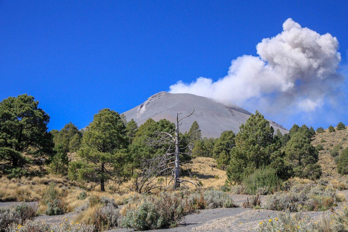 C'est au cours de l'ascension que la première explosion de la journée du volcan se manifeste. ...