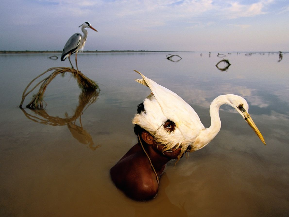 Dissimulant son visage derrière un leurre, un chasseur lève la tête au-dessus des eaux de l'Indus. ...