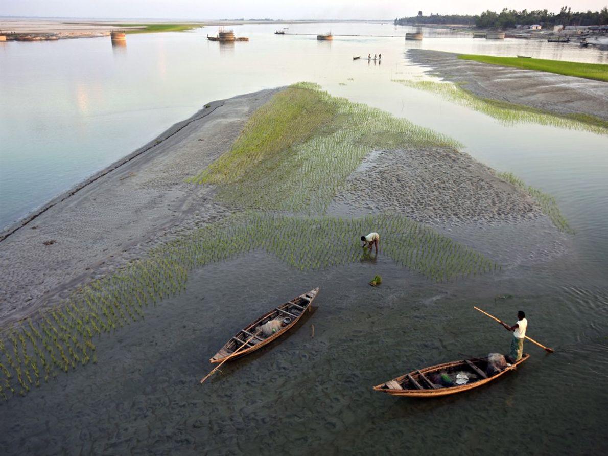 La rivière Teesta s'écoule sur 315 kilomètres à travers l'État indien du Sikkim avant de rejoindre ...