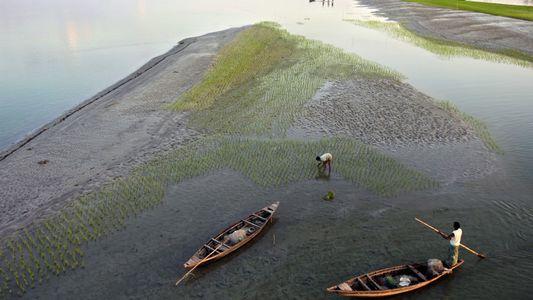 Environnement : ces rivières s'assèchent dangereusement