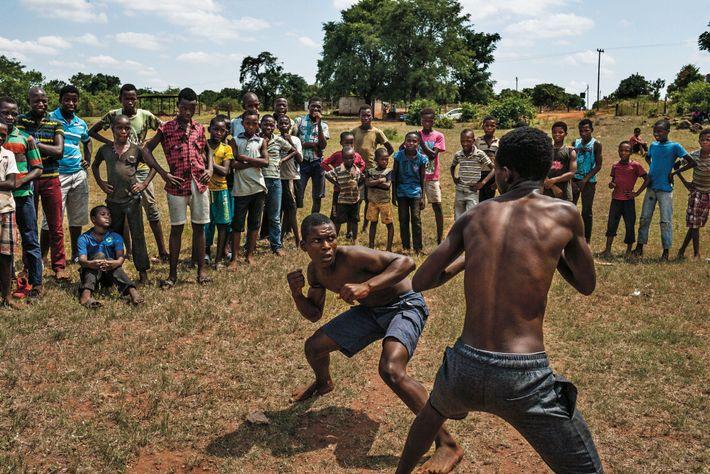 Prêts à cogner de leurs mains nues, des garçons de la tribu Venda se livrent à ...