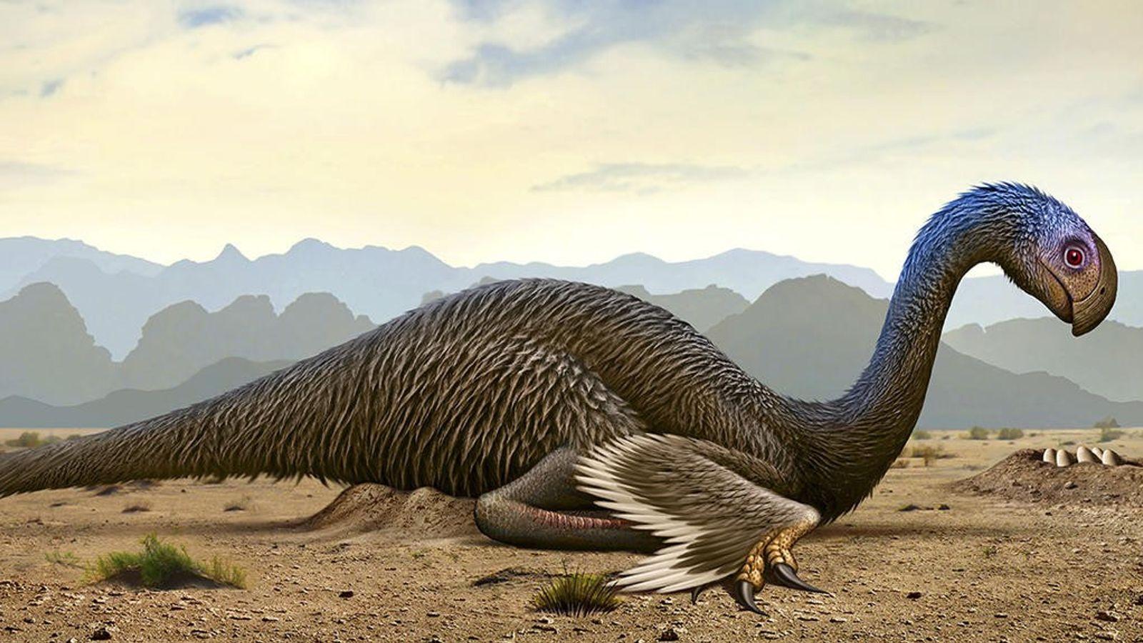 Vue d'artiste d'un gigantoraptor, genre de dinosaure oviraptorosaure disparu au Crétacé.