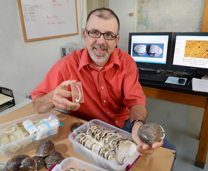 Le paléoclimatologue américain Alan Wanamaker, de l'université de l'État del'Iowa, étudie les coquilles d'Arctica islandica de ...