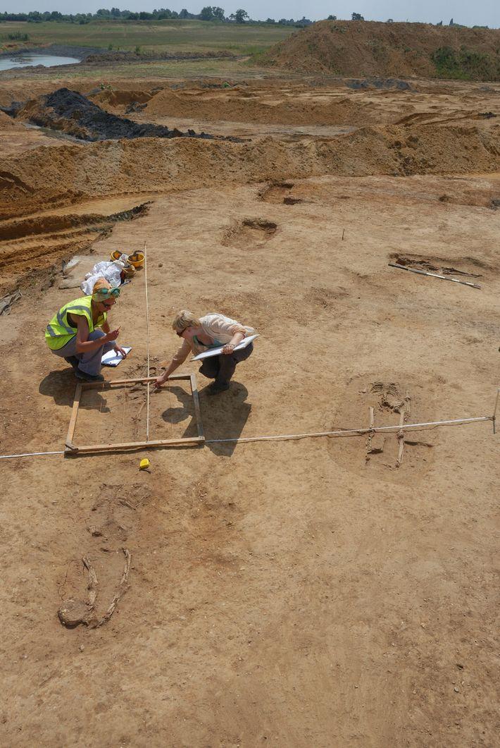 Knobb's farm, fouilles en cours montrant plusieurs des inhumations et le mauvais état général du matériel ...