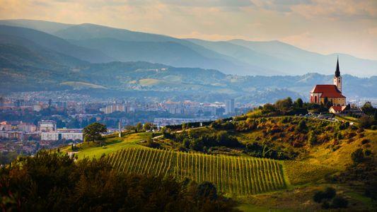 Au détour des vignobles slovènes