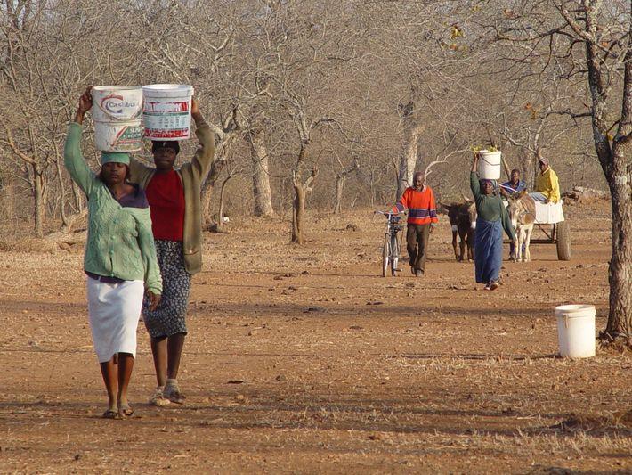 Accès à l'eau dans la zone communale de Sengwe près de la limite perméable du parc ...