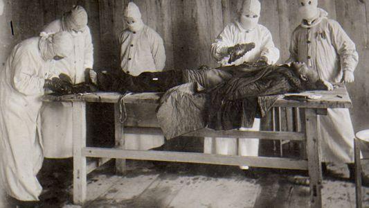 La peste : les nouveaux défis d'un vieux fléau