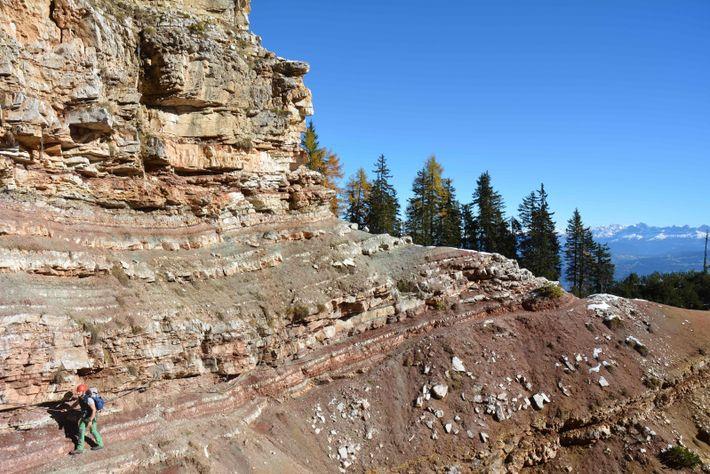 Le paléontologue Massimo Bernardi (MUSE, Trente) inspecte et étudie les premières phases de récupération de la ...
