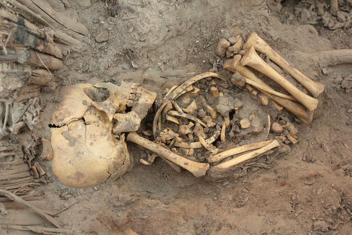 Prochain diaporama : Huge Peru Tomb Found—80 Bodies, Ring of Babies
