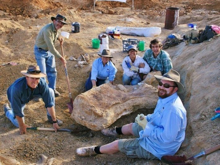 Découvert dans le bassin d'EromangaIl, ce dinosaure géant tire son nom de l'endroit où il a ...