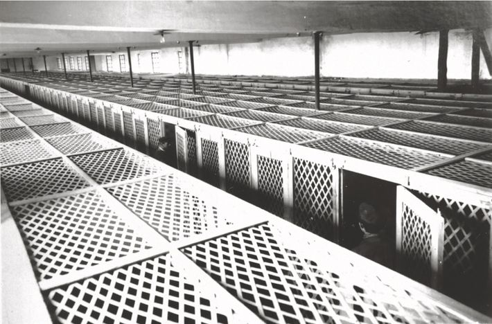 « Cages à poules » de la maison d'éducation surveillée d'Aniane (Hérault), 1930.