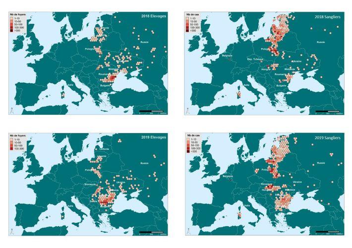Évolution de la diffusion du virus de la Peste Porcine Africaine en Europe en 2018 et ...