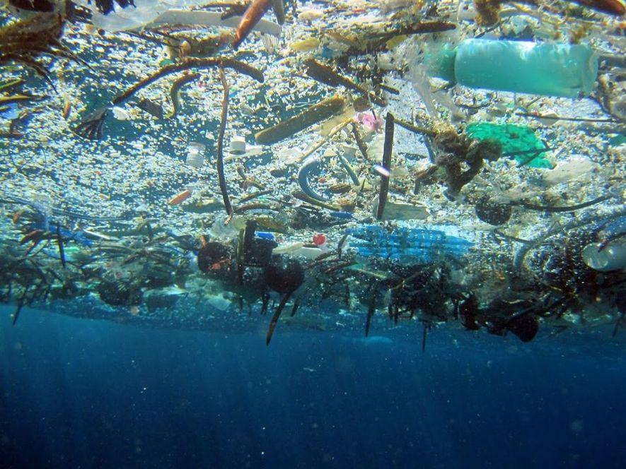 La GPGP flotte à la surface de l'océan. De nombreux débris peut être immergés de quelques ...