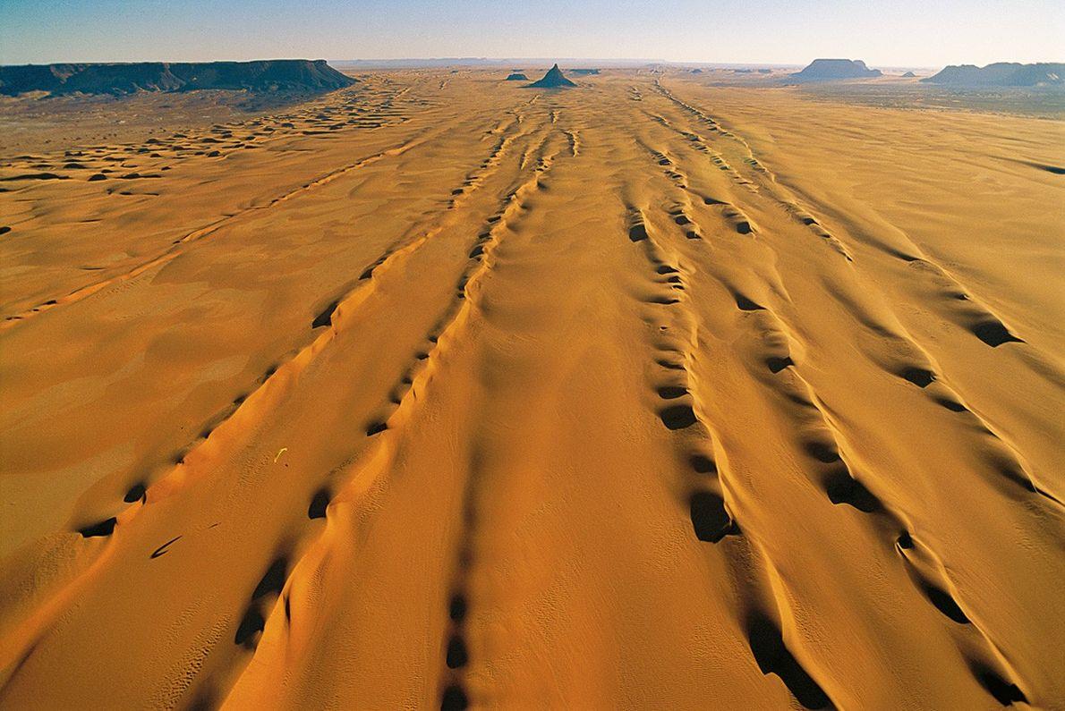 Seif au Sahara (Tchad)