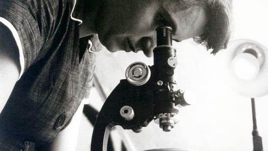 Ces scientifiques qui n'ont pas eu de prix Nobel parce qu'elles étaient des femmes