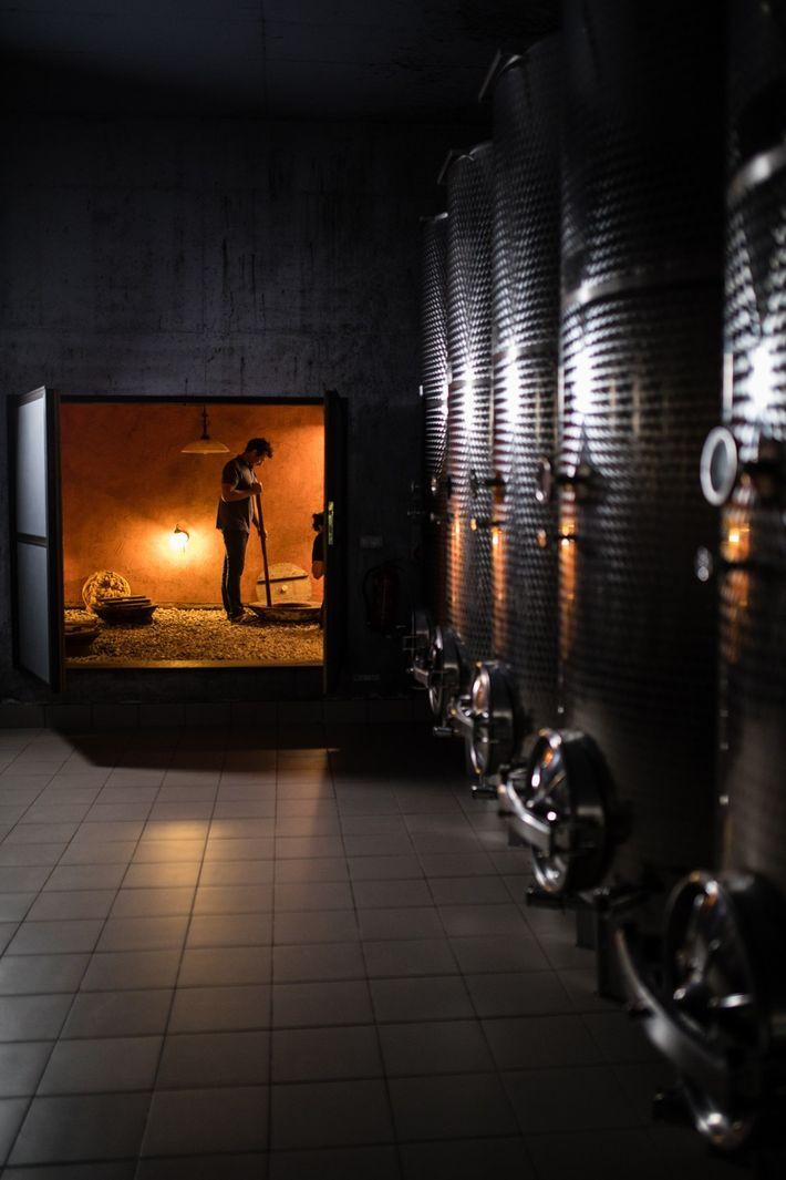 Le vigneron Andrej Erzetič mélange le vin dans la cave familiale. Ces méthodes de fermentation ancestrales ...