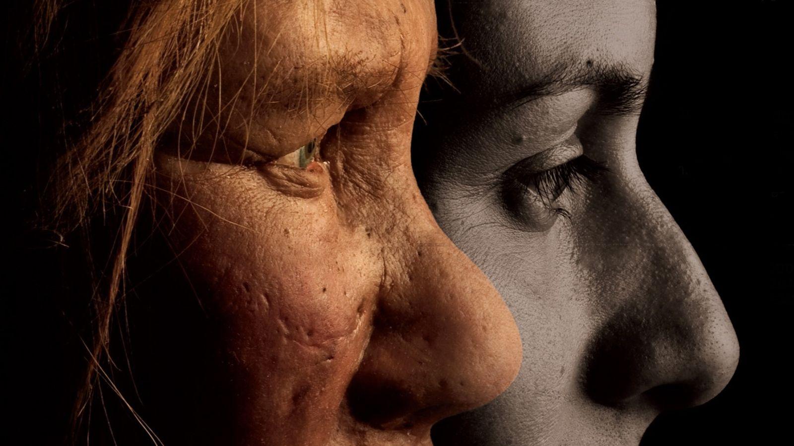 Comparaison de l'anatomie d'un Néandertalien avec celle d'un être humain moderne.