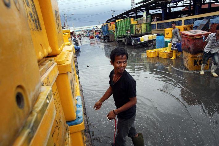 Un pêcheur traverse la rue inondé par les eaux de mer à Jakarta, en Indonésie. Plus ...