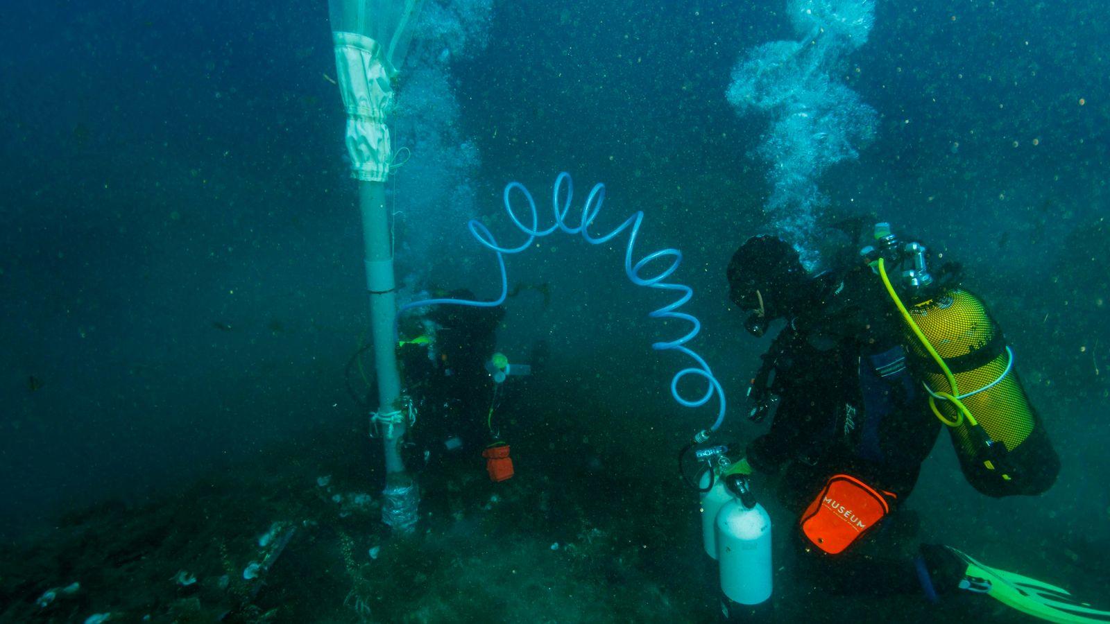 L'utilisation d'aspirateurs sous-marins permet de prélever des organismes de petites tailles tels que des mollusques et ...
