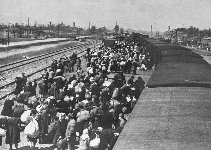 Des juifs arrivent à Auschwitz. Les cheminées en arrière-plan appartiennent respectivement aux Crématoires II et III ...
