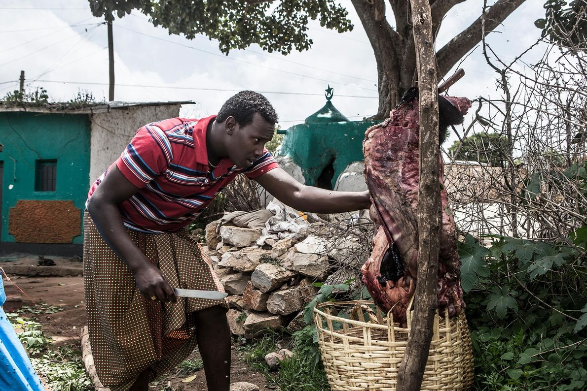 Abbas découpe de la viande destinée au repas nocturne des hyènes.