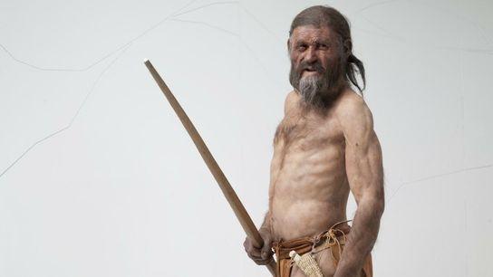 Ötzi, momie naturelle d'un homme assassiné dans les Alpes il y a 5 000 ans, continue ...