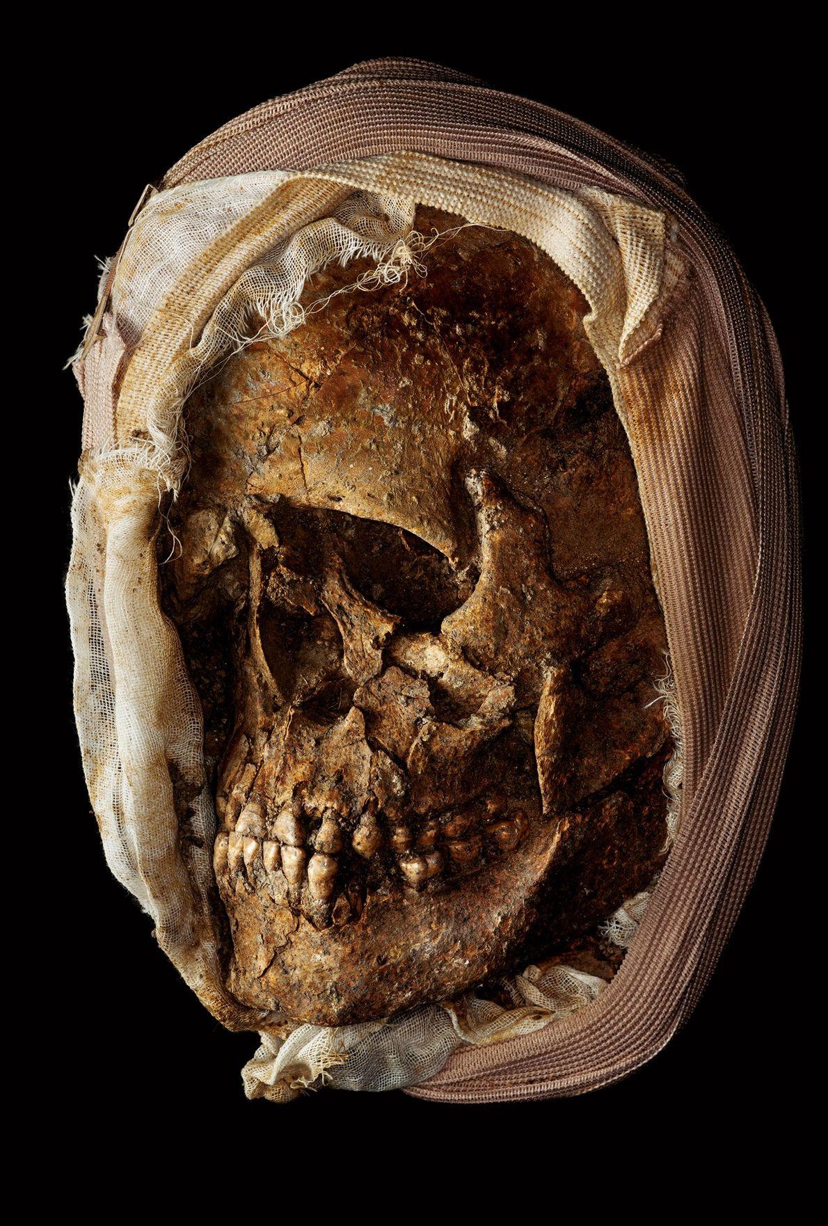Crâne intact du site d'El Cano