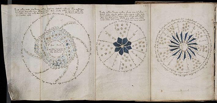 Page 68 du mystérieux manuscrit de Voynich, qui reste indéchiffrée à ce jour.