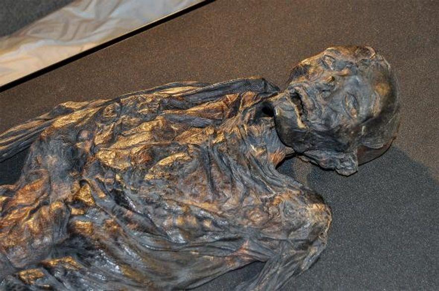 On a d'abord pensé que la femme d'Haraldskær, conservée au musée Vejle au Danemark, était une ...