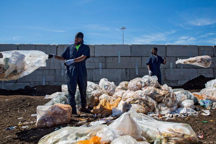Des employés trient les sacs de déchets des cantines des écoles de la ville de New ...