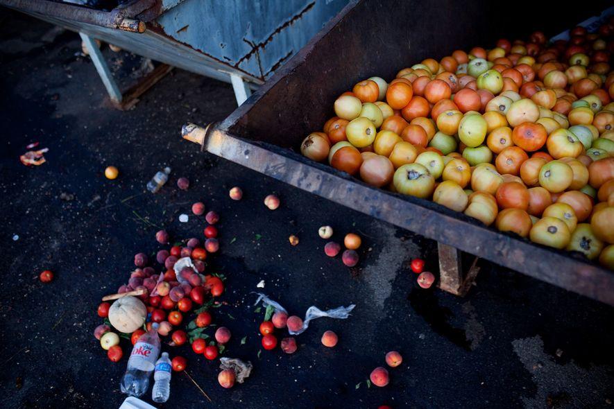 Des tomates invendues remplissent une benne à ordures dans un marché d'agriculteurs à Asheville, en Caroline ...