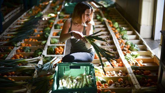 La beauté se trouve dans le regard du consommateur à la coopérative portugaise Fruta Feia (fruit ...