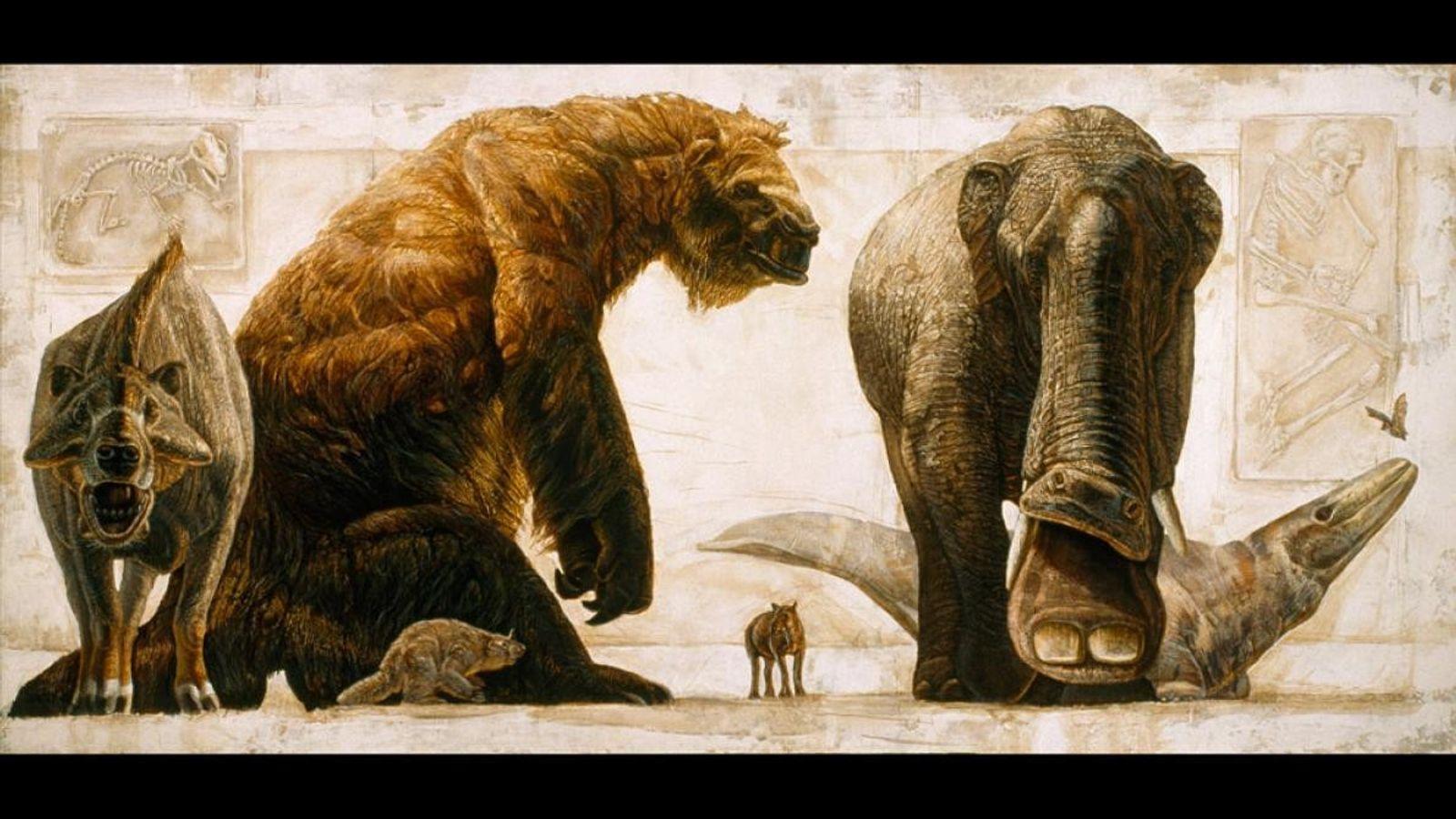 Image extraite d'une série d'illustration représentant des créatures préhistoriques afin de montrer l'évolution des mammifères à ...