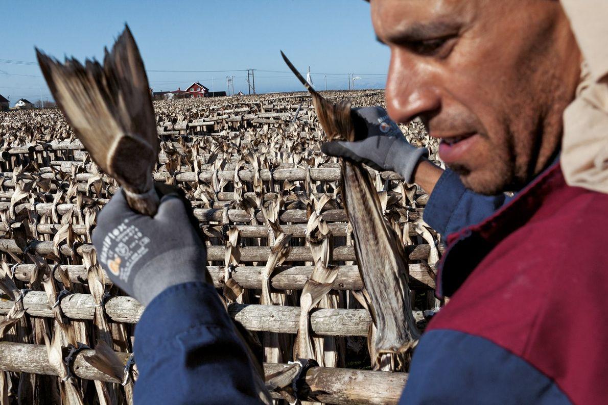 L'arrivée des travailleurs immigrés