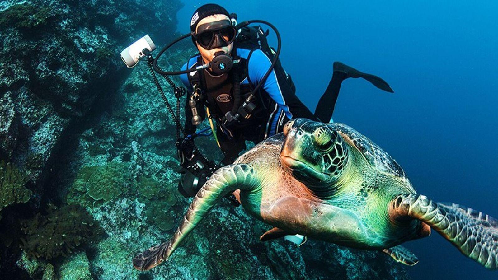 Enric Sala explore les eaux de Nouvelle Calédonie en 2013, pendant une expédition National Geographic.