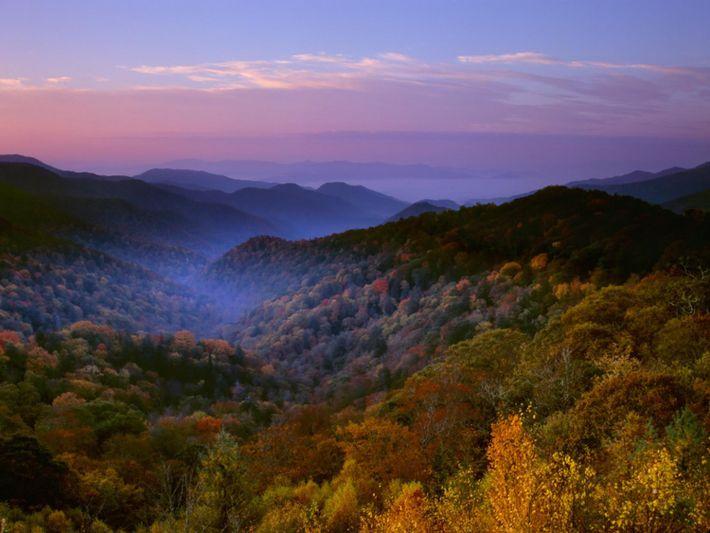 Le brouillard persiste dans les collines boisées du parc national des Great Smoky Mountains, qui couvre ...
