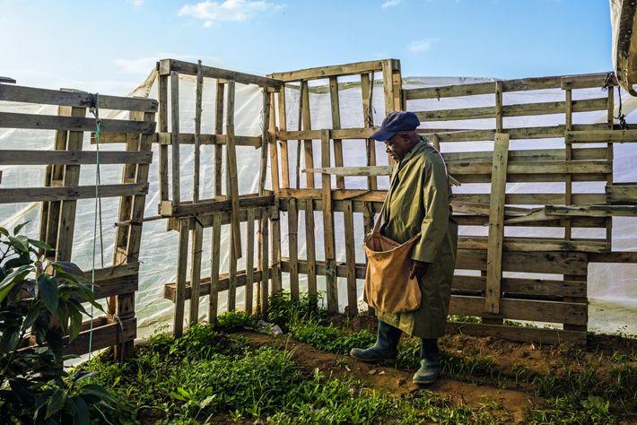 Francisco Braima Sanhá, originaire de la Guinée-Bissau, est arrivé en Andalousie dans les années 1980 en ...
