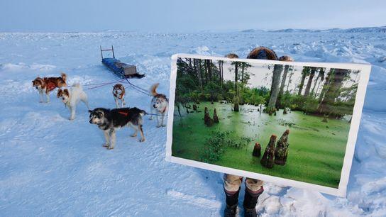 L'Inuit Johnny Issaluk tient une photo récente d'un marécage de la Caroline du Sud. C'est ce ...