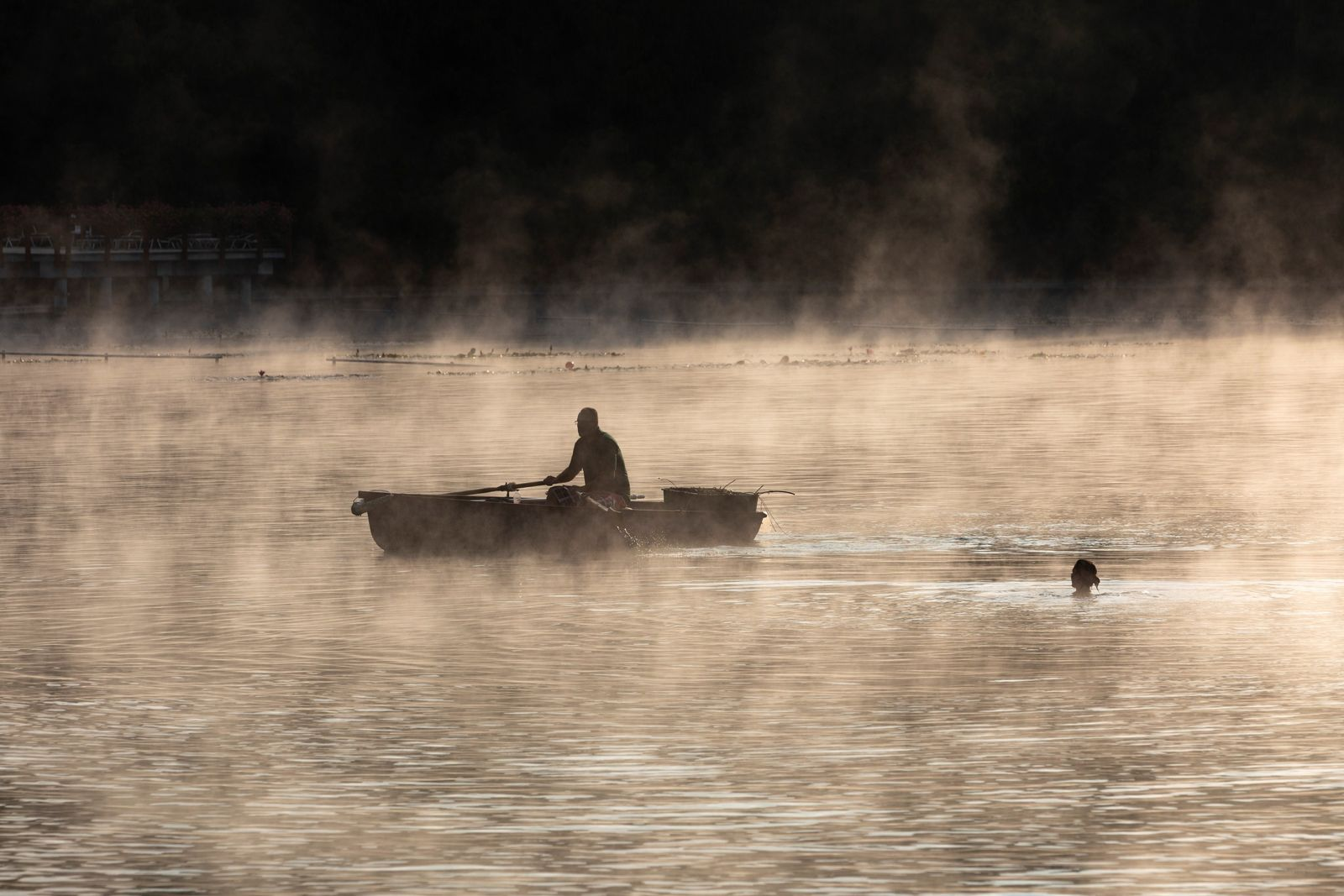 Un nageur matinal rencontre un canotier sur le lac thermal de Hévíz, situé dans l'ouest de ...
