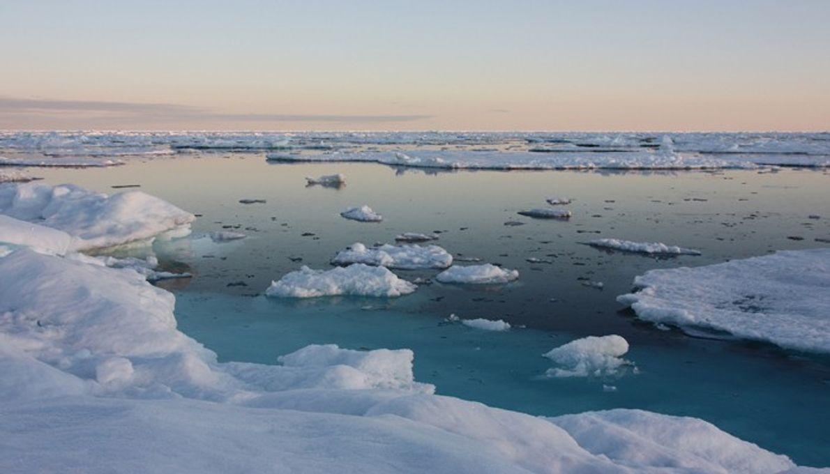 Un couple survole le Groenland pour montrer les effets du changement climatique